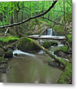 Deep Woods Stream 2 Metal Print