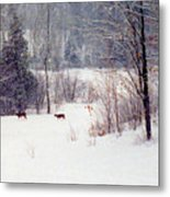 Deer By The Forest Db Metal Print
