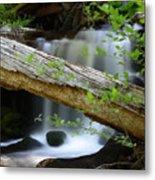 Deer Creek 13 Metal Print