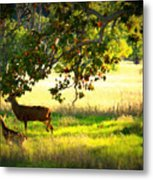 Deer In Autumn Meadow - Digital Painting Metal Print