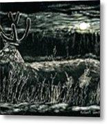 Deer In Moonlight Metal Print
