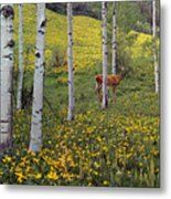 Deer In Spring Metal Print