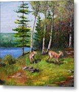 Deer Meadow Metal Print