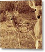 Deer Sepia V3 Metal Print