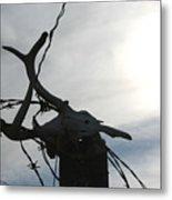 Deer Skull In Wire Metal Print