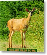 Deer To Me Metal Print