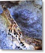 Deer Virtabrate Metal Print