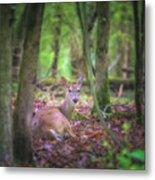 Deer1 Metal Print