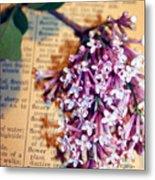 Defining Lilacs Metal Print