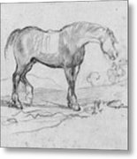Degas, Horse.  Metal Print