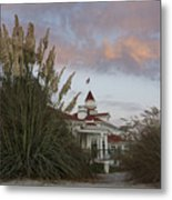 Del Coronado Brushes Metal Print