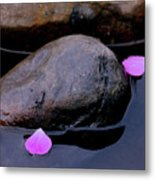 Delicate Petals With Rocks Metal Print