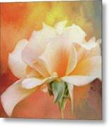 Delicate Rose On Color Splash Metal Print