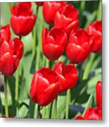 Delicious Tulips Metal Print