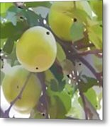 Delicious Yellow Apple In Summer Metal Print