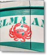 Delma Ann Metal Print