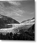 Denali National Park 6 Metal Print