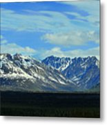 Denali Valley Metal Print