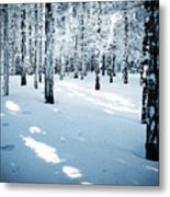 Dense Spruce Snowy Forest Metal Print