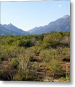 Desert And Mountains In Mexico Cabo Pulmo Metal Print