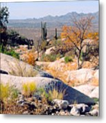 Desert Autumn Metal Print
