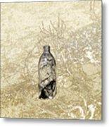Desert Bottle Metal Print