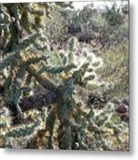 Desert Cactus 4 Metal Print