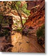 Desert Canyon Paradise - Coyote Gulch - Utah Metal Print