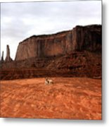 Desert Friend Metal Print