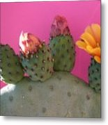 Desert Jewels IIi Metal Print