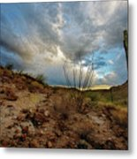 Desert Landscape With Clouds Metal Print