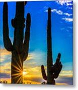 Desert Morning Sunrise Metal Print