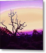Desert Sunset With Silhouetted Tree 2 Metal Print