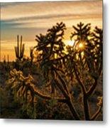 Desert Sunshine Shining Through  Metal Print