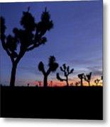 Desert Trip II Metal Print