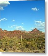 Desert View 340 Metal Print