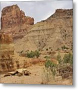 Desert Wash Metal Print