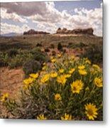 Desert Wildflowers In Spring Metal Print
