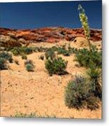 Desert Yucca In Bloom Valley Of Fire Metal Print