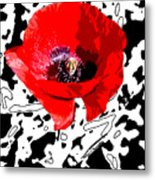 Design Poppy Metal Print