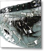 Detail Mayfly Wing Metal Print