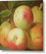 Detail Of Apples On A Shelf Metal Print