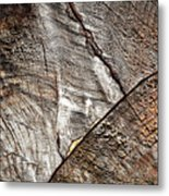 Detail Of Old Wood Sawn Metal Print
