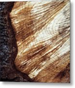 Detail Of Sawing Wood With Bark Metal Print