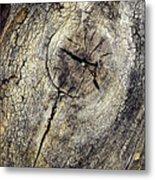 Detail Stumps On Old Wood Metal Print