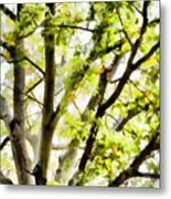 Detailed Tree Branches 3 Metal Print
