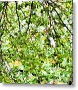 Detailed Tree Branches 4 Metal Print