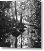 Devil Water In Sunlight Metal Print
