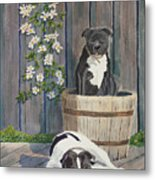Devilish Duo At Rest Metal Print