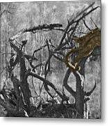 Devil's Tree Metal Print
